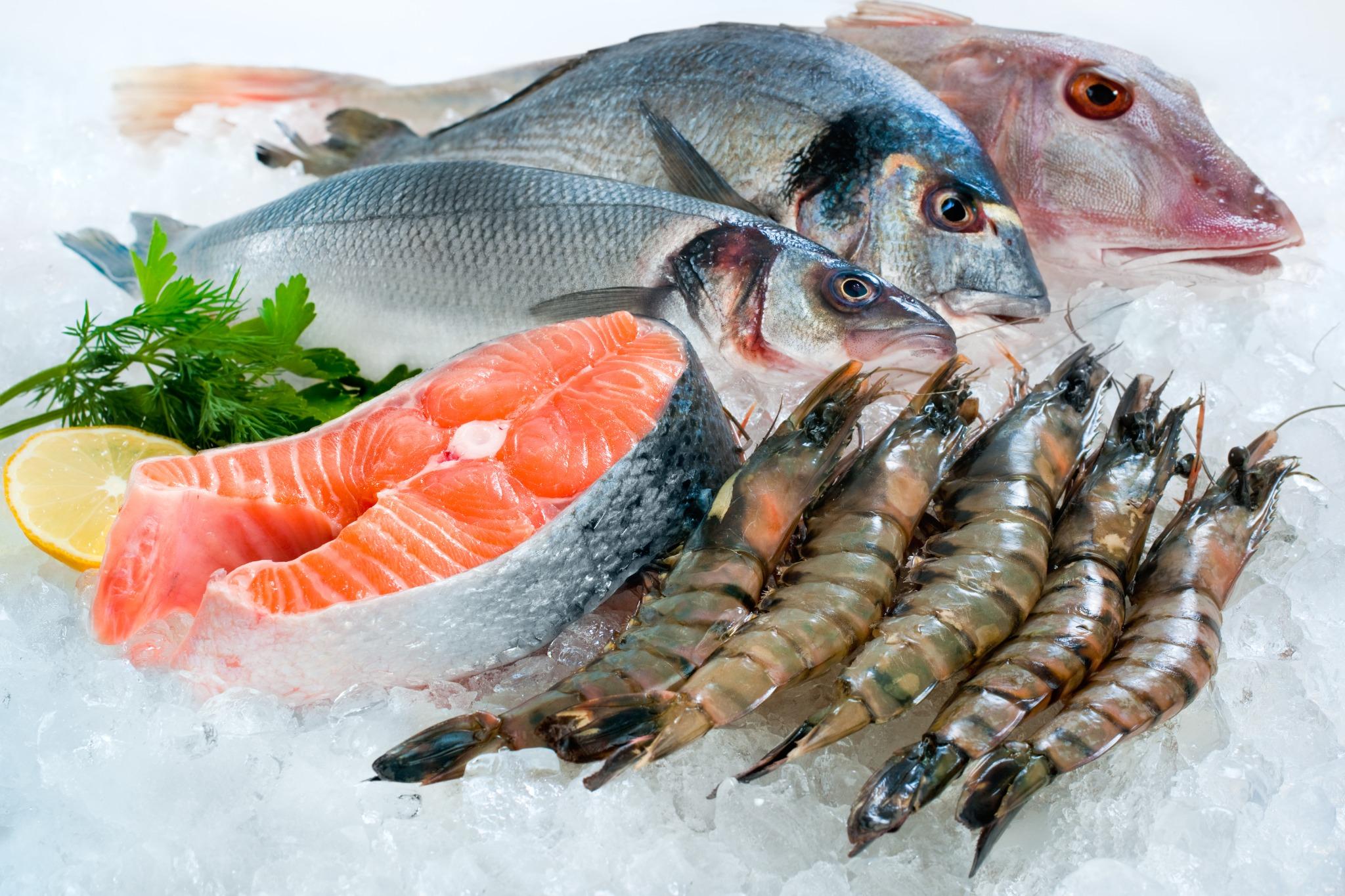 fisch amp meeresfrüchte